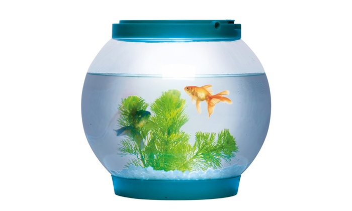 700x420 LED 5L Glass Betta Fish Bowl Groupon Goods
