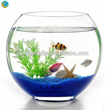 337x350 Oblique Glass Fish Bowlglass Fish Tank