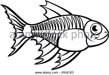 450x309 Black outline smiling cartoon fish with big teeth Stock Photo