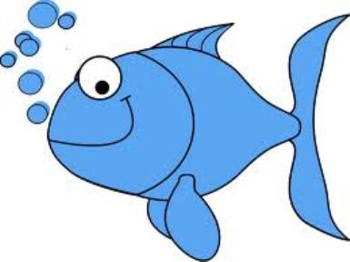 385x288 Fish Clip