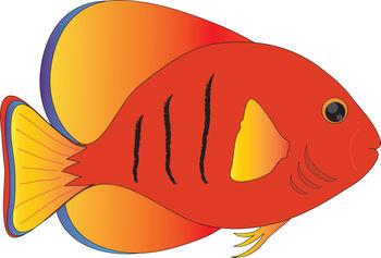 350x237 Fish clip art vector free clipart images 4