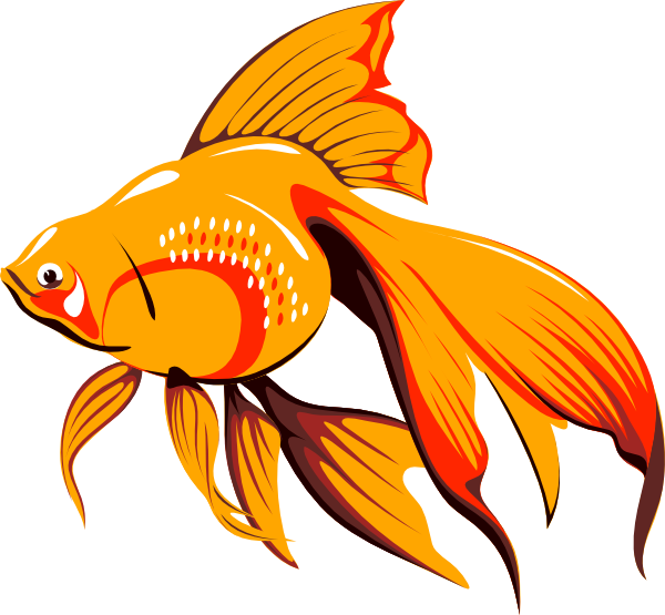 600x555 Golden Fish Clip Art Free Vector 4vector