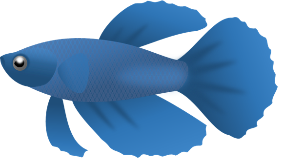 582x336 Betta Fish Clip Art Many Interesting Cliparts