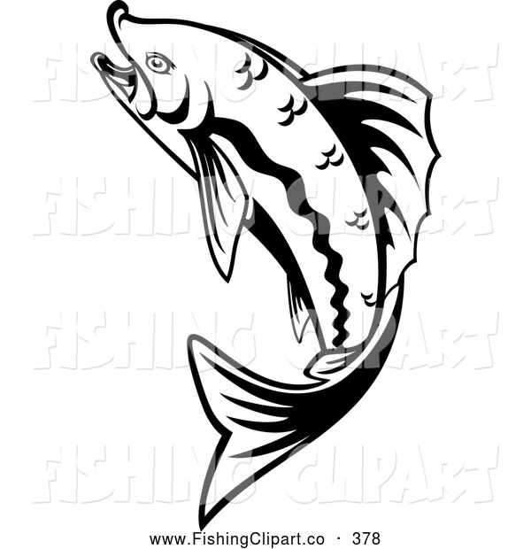 600x620 Trout Black And White Clipart