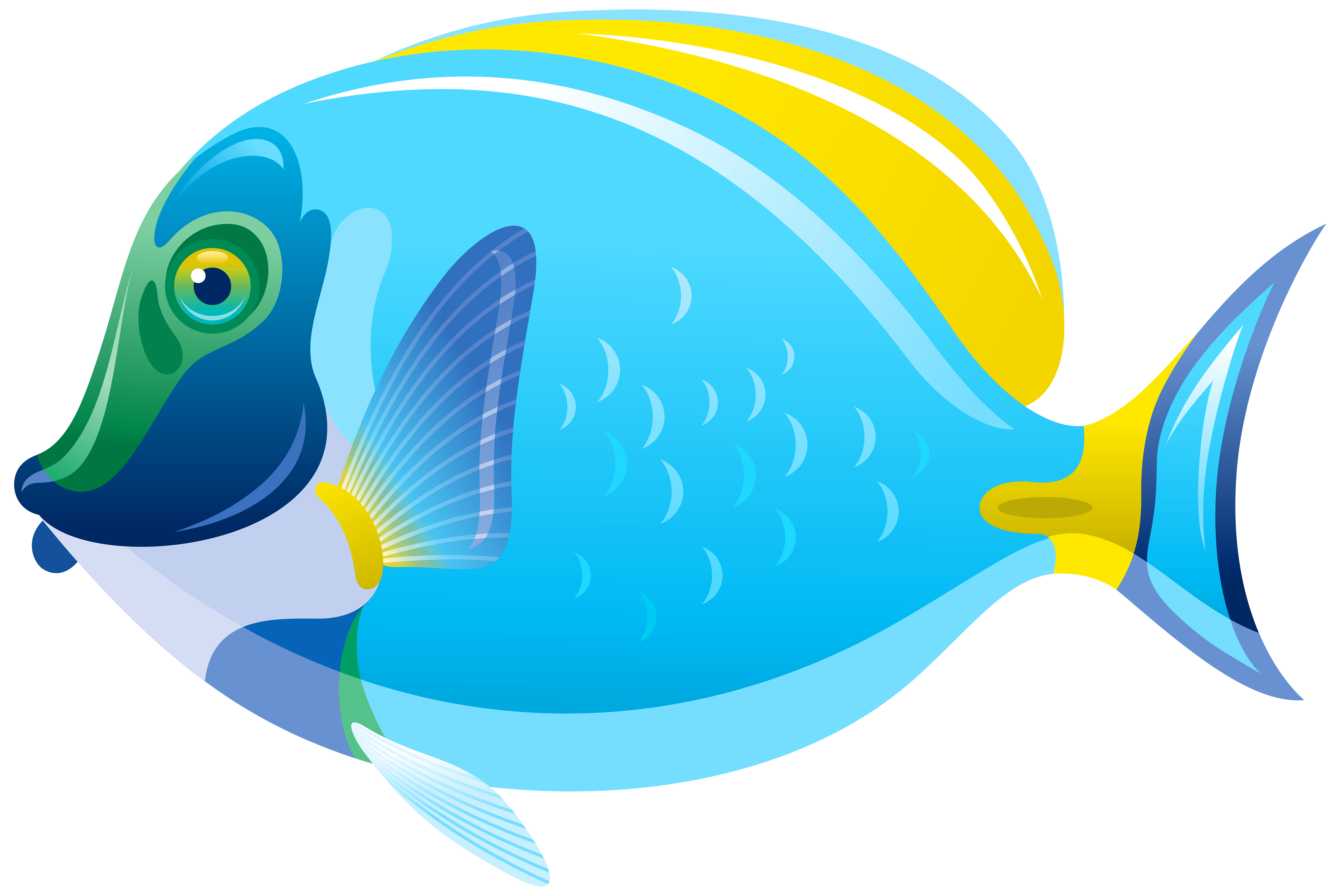6000x4012 Fish Png Clip Art Imageu200b Gallery Yopriceville