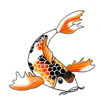 344x354 Koi Fish Clipart