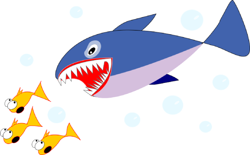800x497 Top 90 Shark Clip Art
