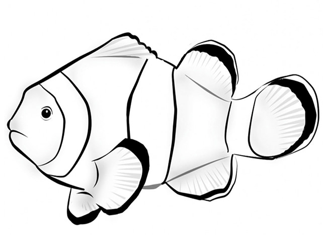 650x467 Fish Template – 50+ Free Printable, PDF Documents Download! Free