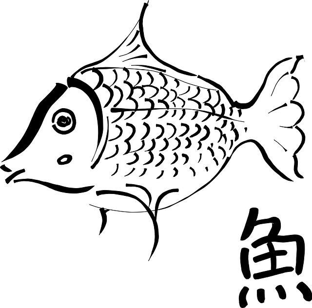 640x632 19 best koi drawing images Fish, Drawing ideas and