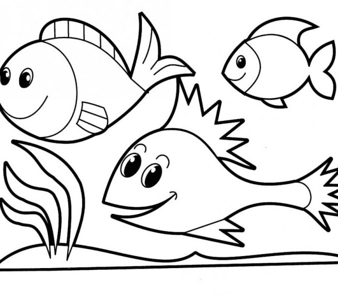 678x598 Trend Fish Color Sheet 64 For Your Line Drawings with Fish Color
