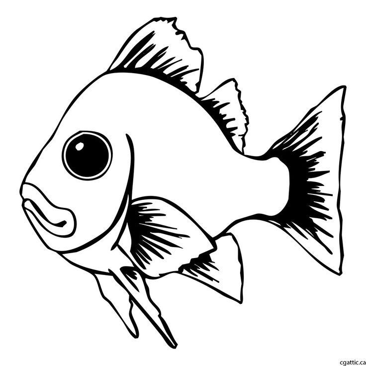736x736 Best 25+ Drawings of fish ideas Fish art, Fish