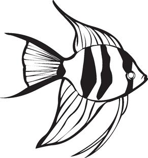 Angel fish drawings - photo#34