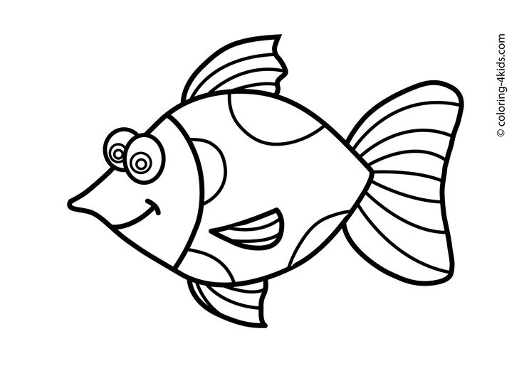 Fish Line Drawings