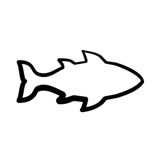 Fish outline design. Clipart free download best