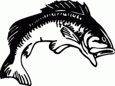 400x300 Fishing Clipart Bass Fishing