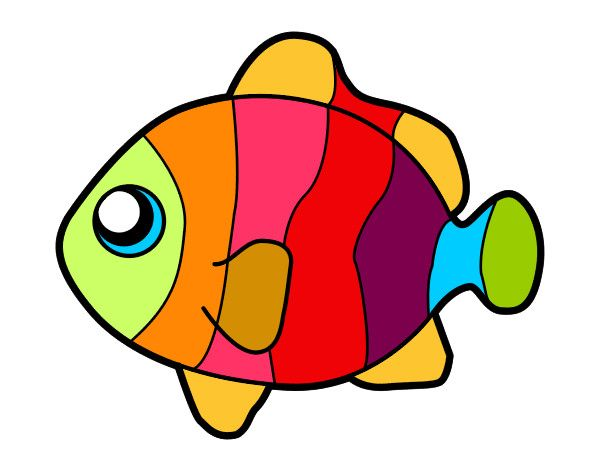 600x470 51 Best Fish And Fishing Images Fish, Diy And Drawing