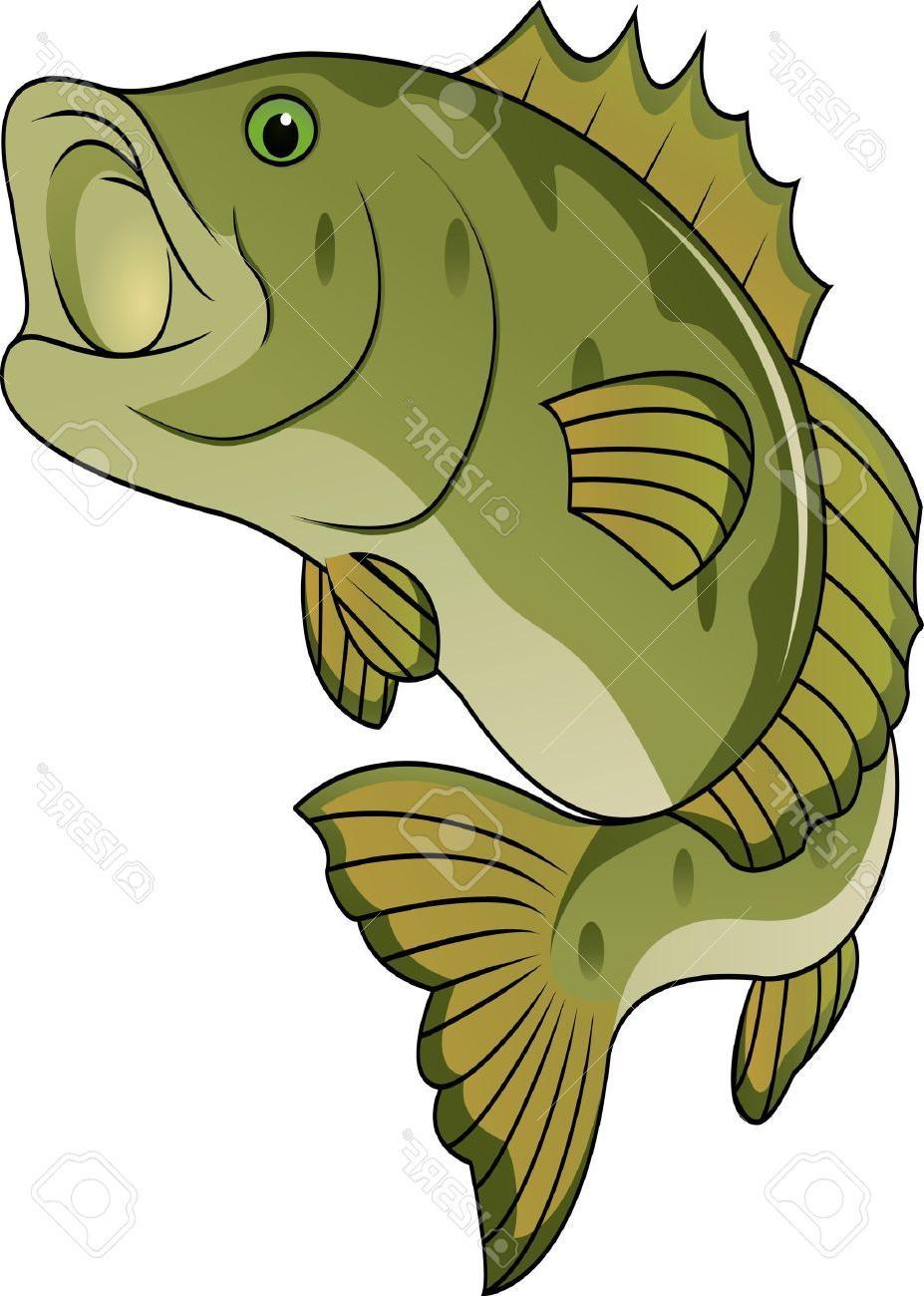 927x1300 Unique Funny Fish Cartoon Stock Vector Bass Fishing Images