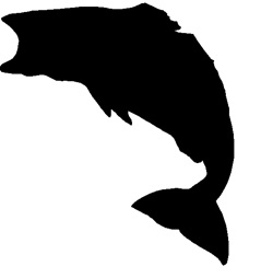 250x254 Bass Fish Silhouette Clipart