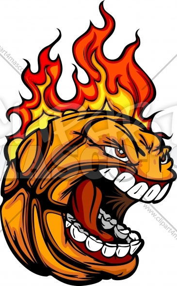 365x590 Basketball Ball Face With Flaming Hair Vector Sports Clipart Image