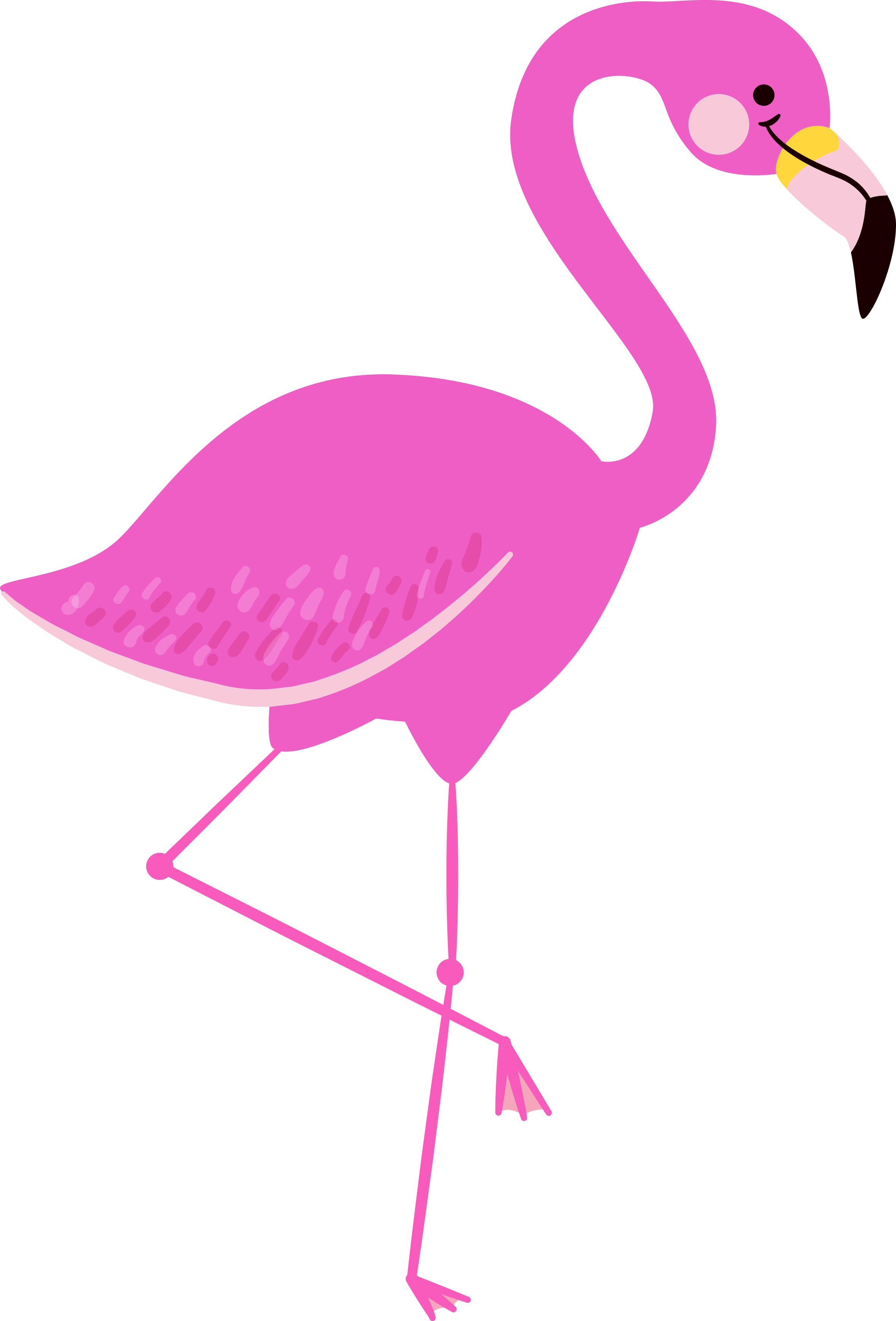 Flamingo Clipart Free   Free download on ClipArtMag - photo#26
