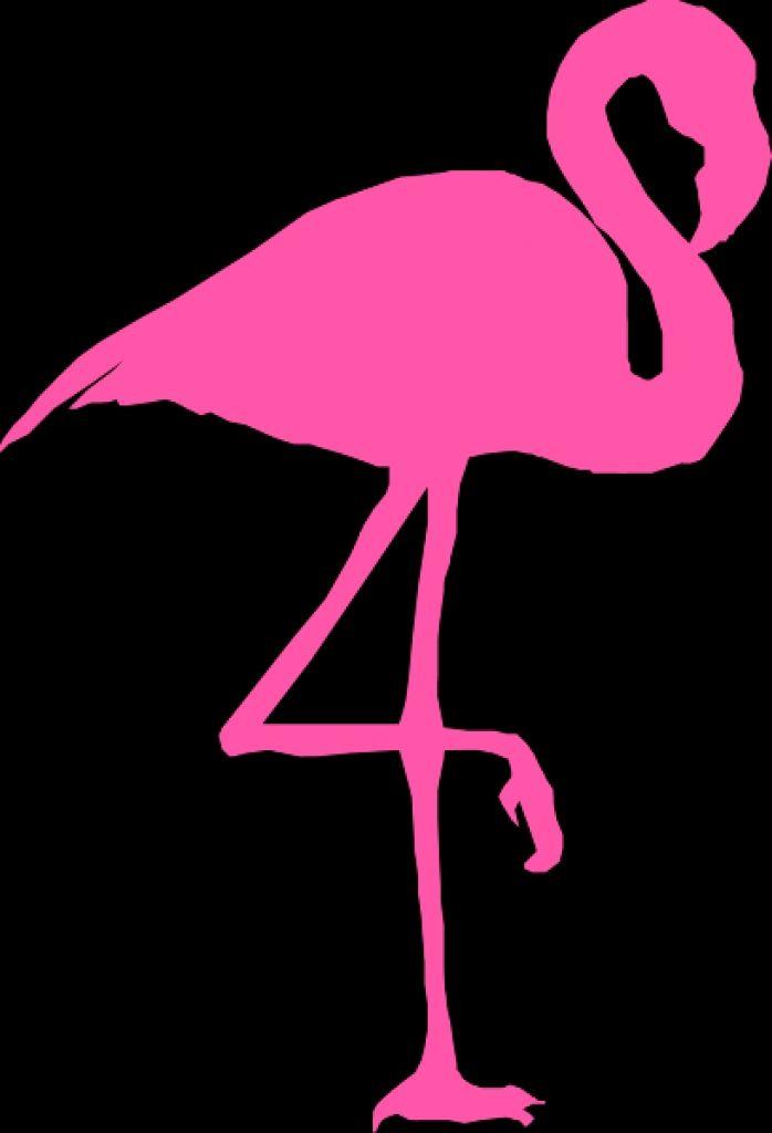 Flamingos Clipart