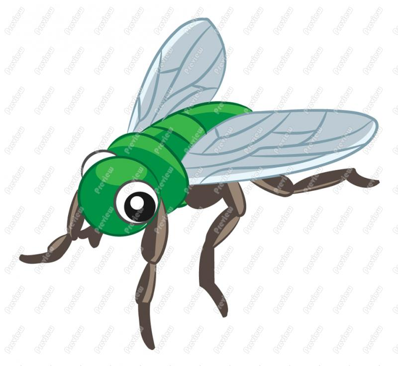 800x735 Fly Character Clip Art