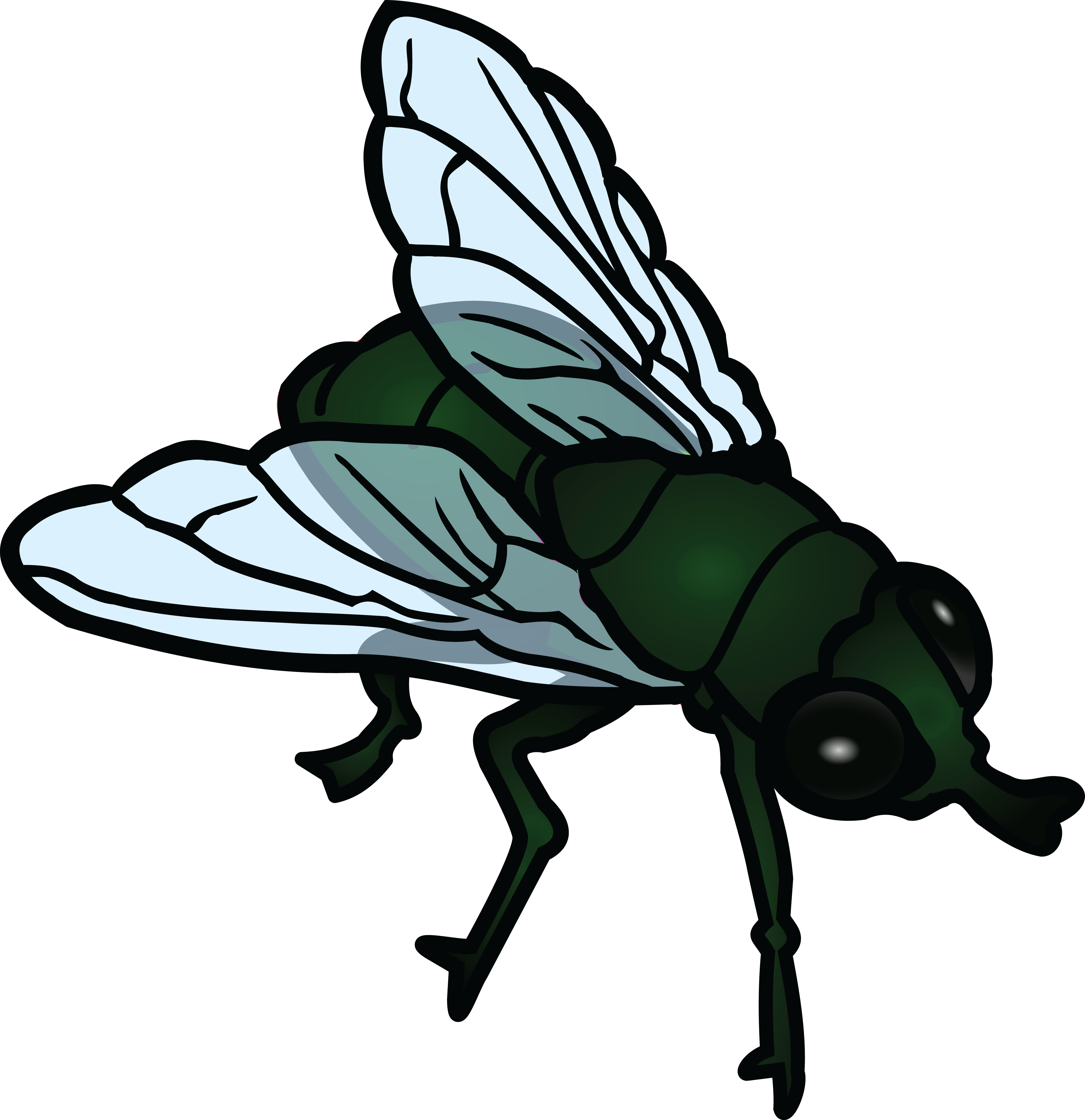 4000x4130 Free Clipart Of A Fly