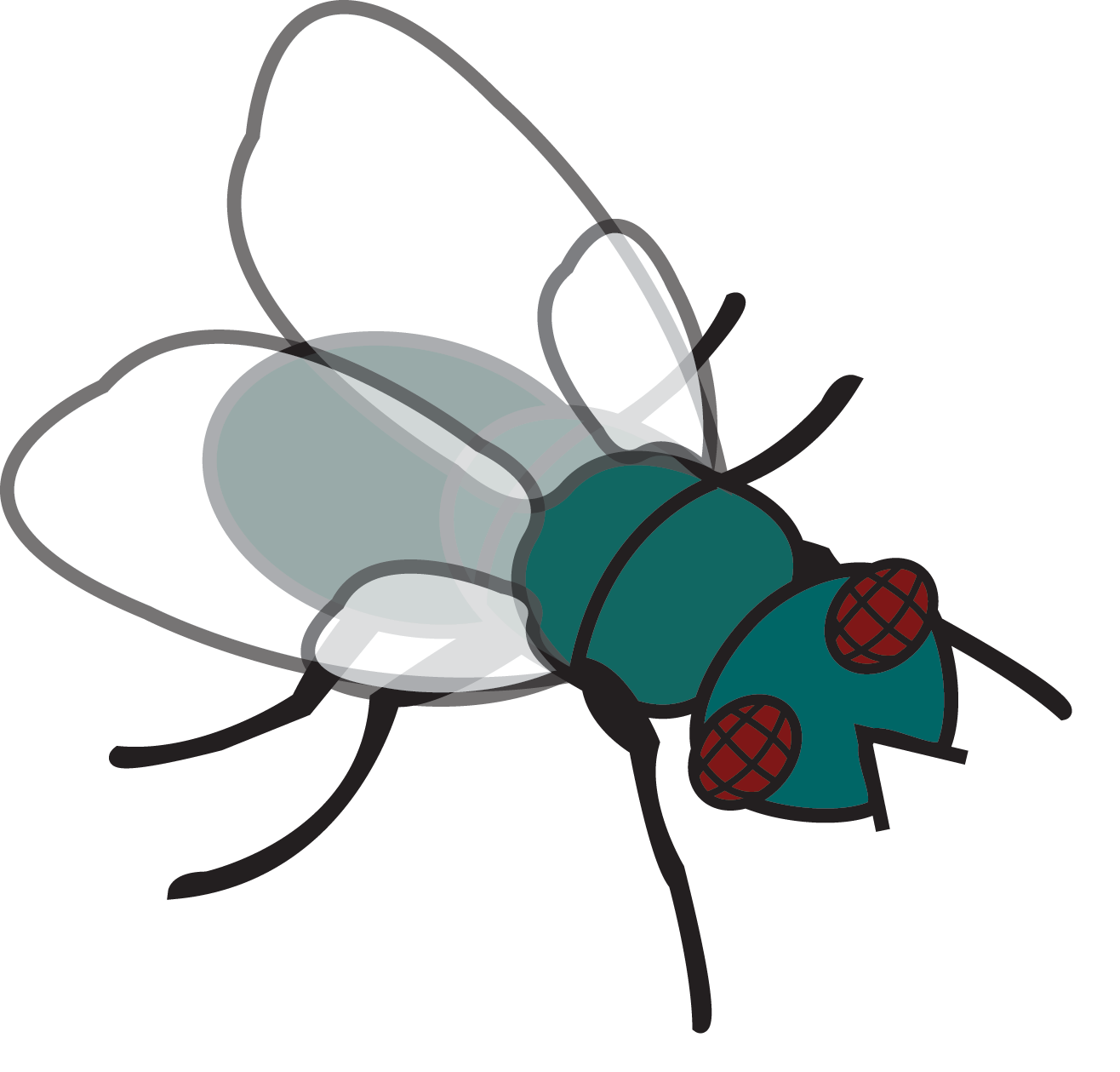 1316x1259 Top 91 Fly Clipart