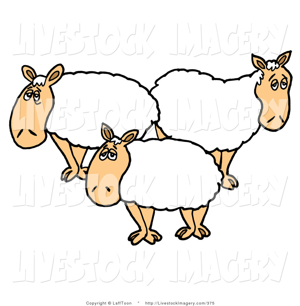 1024x1044 Sheep Clipart Three