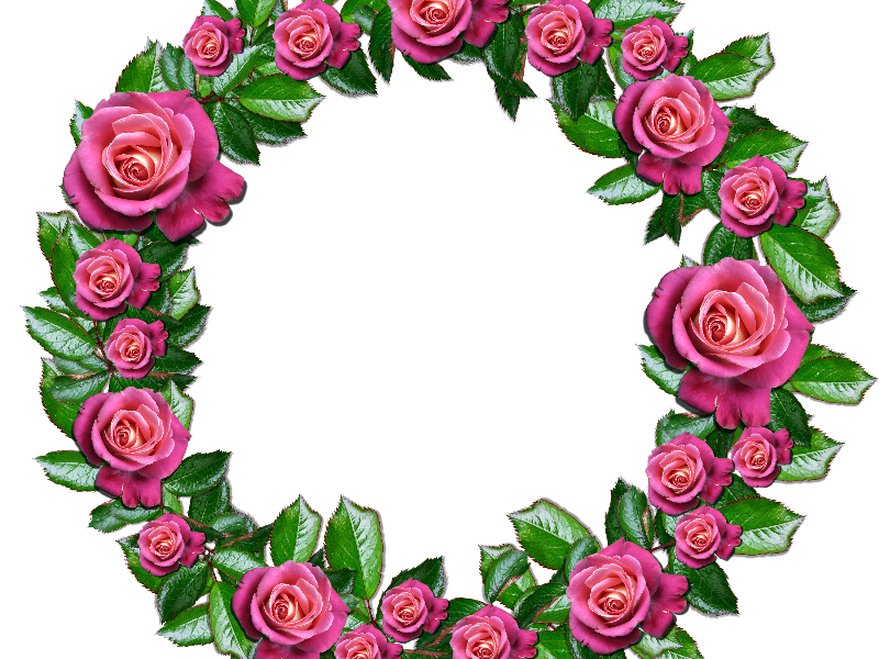 800x600 Floral Wreath Png With Pink Roses Leafs (Nature Grass