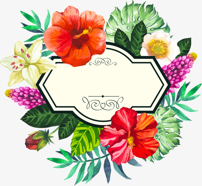 650x597 Hand Painted Watercolor Tropical Borders, Hand Drawn Border