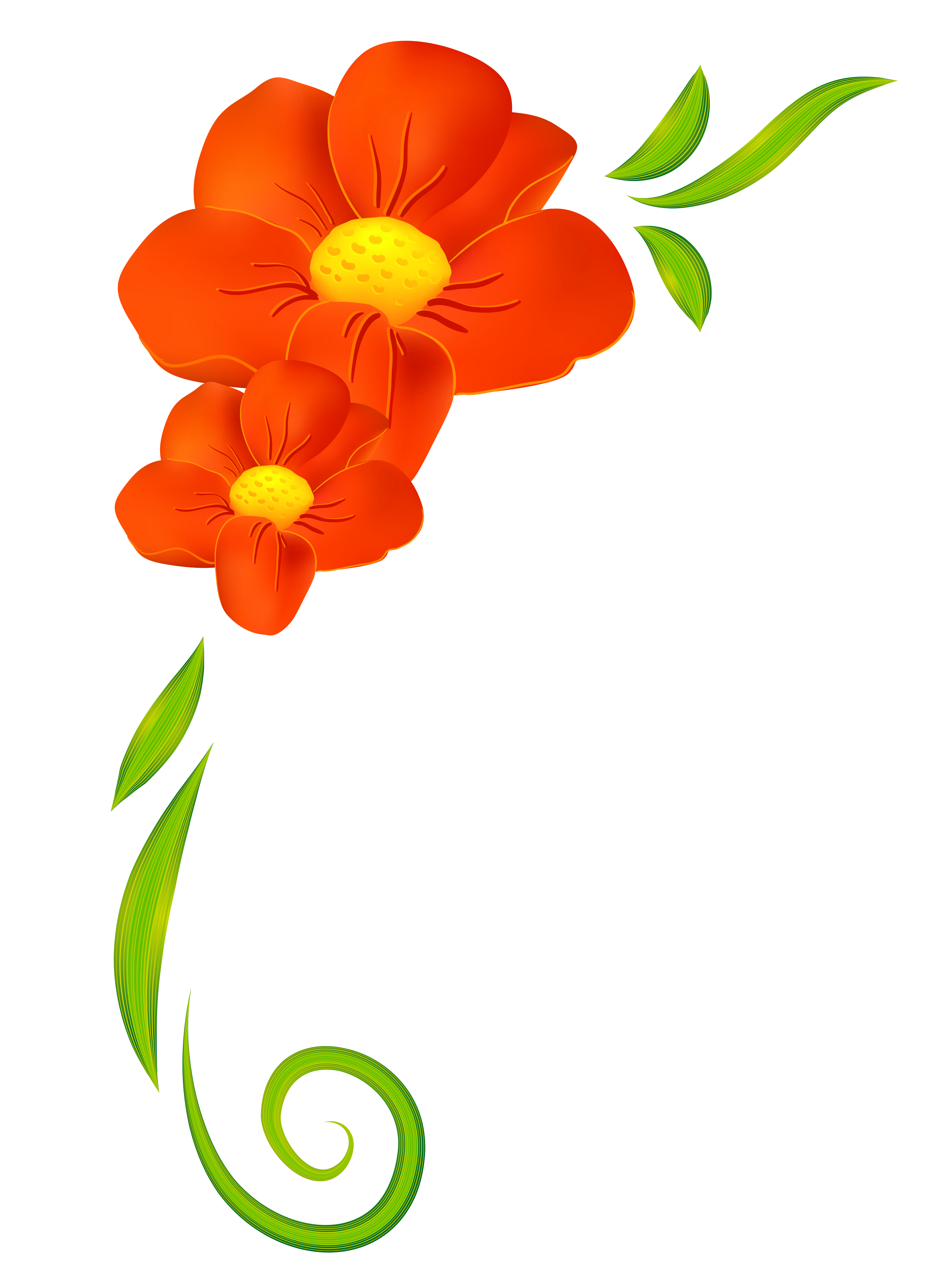 3924x5263 Image Result For Clipart Spring Flowers Flowers Hd
