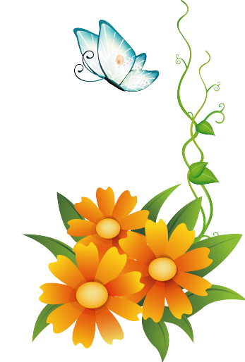 347x514 Orange Flower Clipart Floral Border