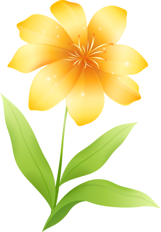 553x800 Yellow Floral Background Png, Pc Yellow Floral Background Png Most
