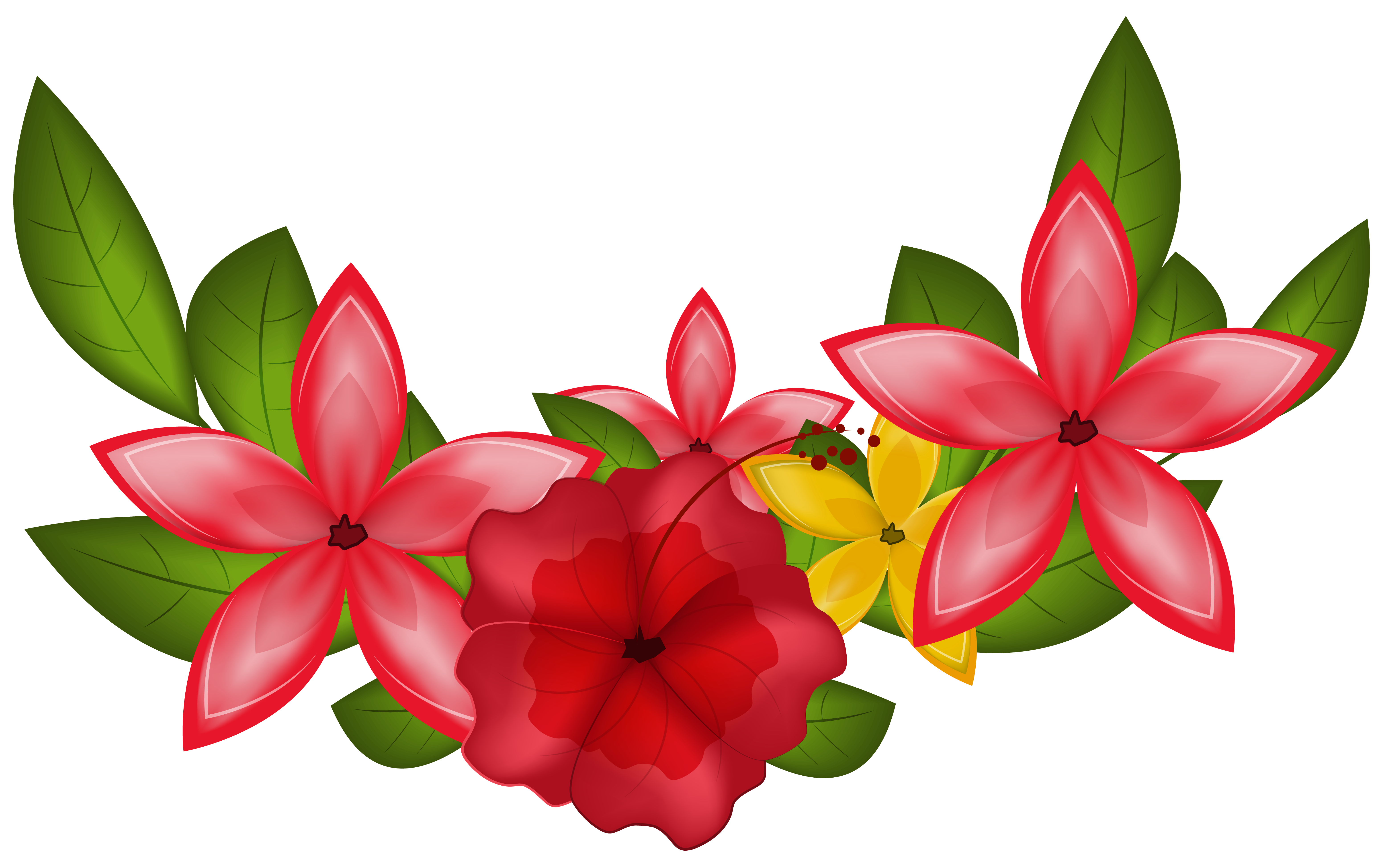 6221x3898 Exotic Floral Decoration Png Clipart Imageu200b Gallery Yopriceville