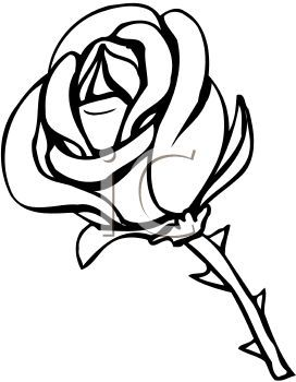 Flower border clipart black and white free download best flower 272x350 rose clipart black n white mightylinksfo