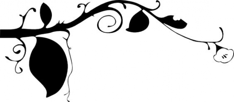 820x359 Black And White Border Designs Black Flower Vine Clip Art