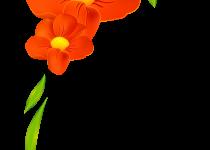 210x150 Clip Art Flower Border Clip Art