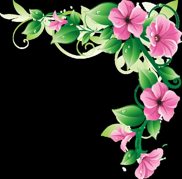 640x628 Pink Flower Border