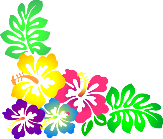 570x486 Hawaiian Flower Border Clipart