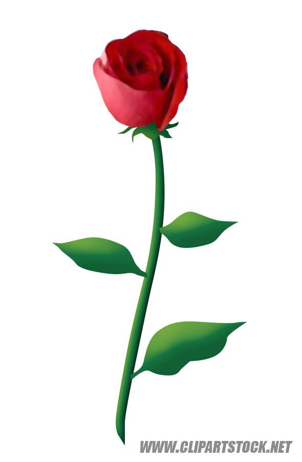 590x900 Rose Border Clipart. Flower Clipart Panda