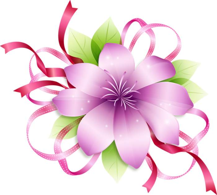 700x629 Flower Clipart Images Png