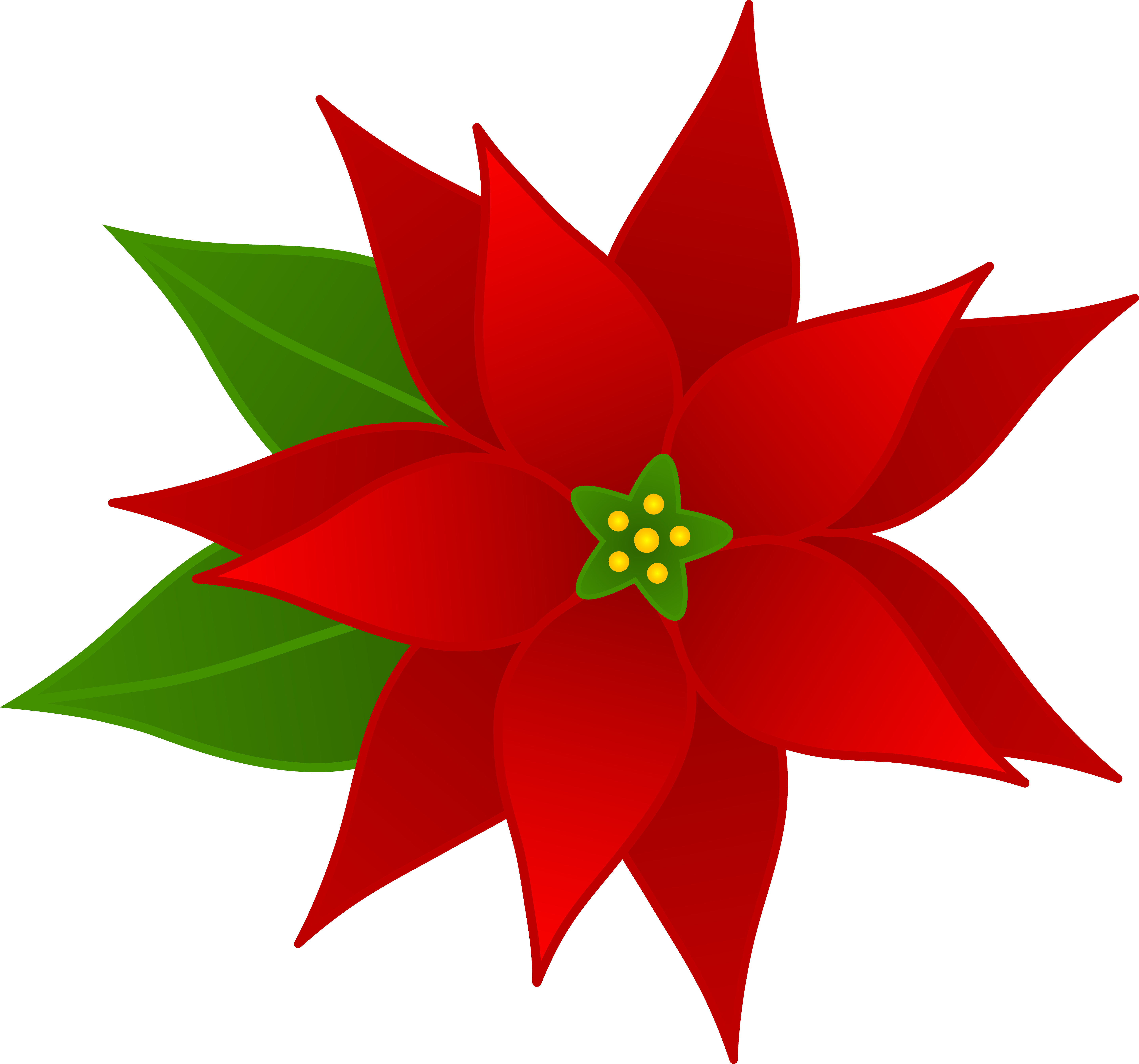 5747x5369 Christmas Poinsettia Flower
