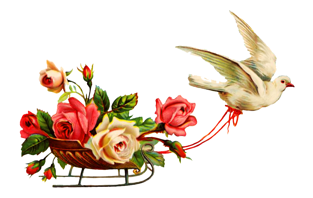 Flower Clipart For Wedding Invitations Free Download Best Flower