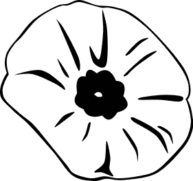 281x264 White Flower Clipart Poppy