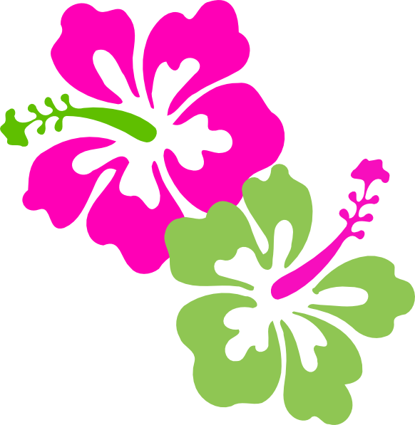 582x597 Hibiscus Pink Lime Green Clip Art