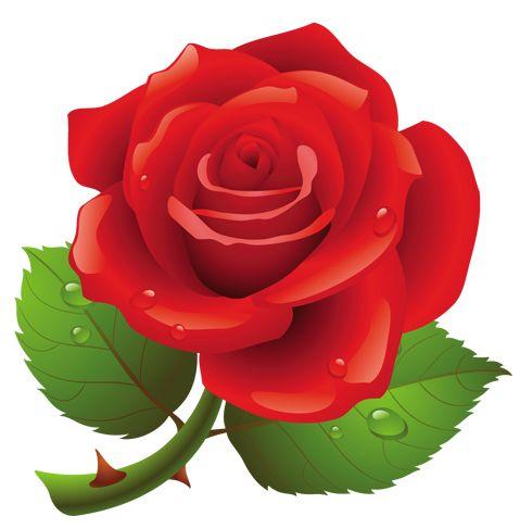 Flower Clipart Rose