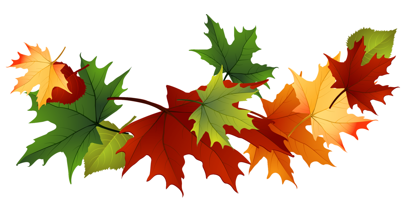 1328x672 Fall Leaves Transparent Background Clipart