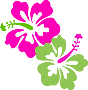 291x299 Hibiscus Pink Lime Green Clip Art