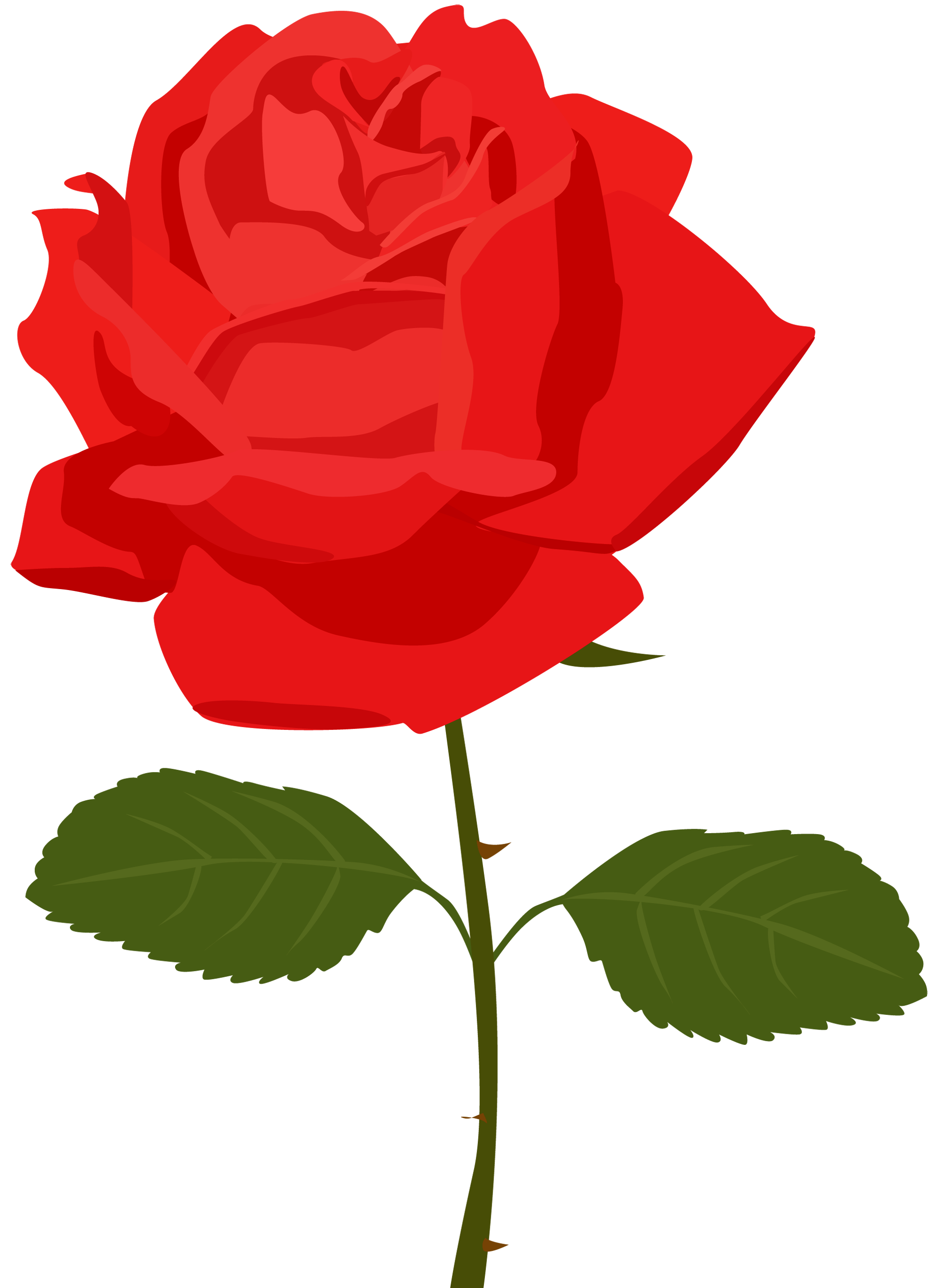 1950x2707 Red Flower Clipart Transparent